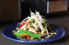 Asian Chicken salad on blue plate